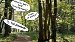 Trees in a Woodland with speech bubbles