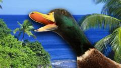 A duck looks shocked against a tropical background