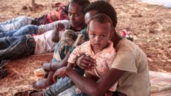 Families displaced by fighting in Tigray, Ethiopia