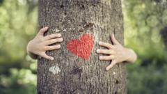 nature-hug-trees.