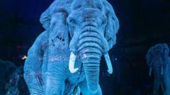 Hologram Elephant in the circus.