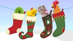 ball of string, duck, chicken and kitten in stocking