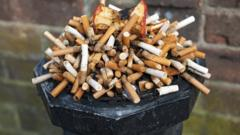 Picture of lots of cigarettes in an ashtray