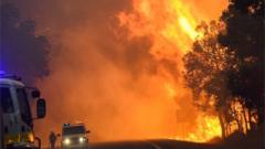 A handout image provided by the Department of Fire and Emergency Services on 09 January 2016 of a bushfire at Yarloop, 120 km south of Perth, Australia.