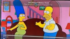 A grab from the Simpsons programme.