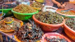 insects-and-bugs-for-sale-at-a-market-in-asia.