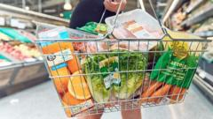 Closeup of a basket of shopping, held by a shopper, inside a Morrisons supermarket