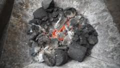 Charcoal made from poo