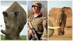 rhino/soldier/elephant