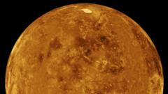 Venus could have once been much like earth.