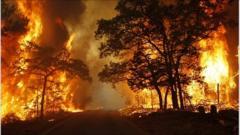 Fire on a road near Bastrop, Texas