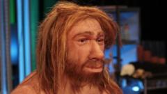 The face of the completed Neanderthal hominid