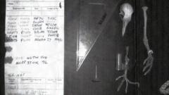WWII pigeon message still a mystery