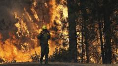 Fireman tackling flames