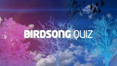 Graphic image with text saying birdsong quiz