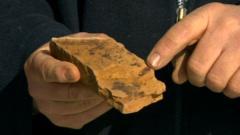 A dinosaur bone fossil