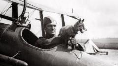 RAF fox mascot with pilot in WW1