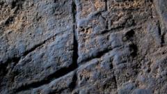 "Neanderthal ""artwork"""