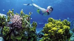 "A woman snorkels on the Great Barrier Reef off Australia""s Queensland state"