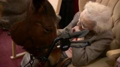 Rupert the horse