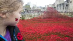 Girl looking at poppies