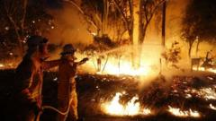 Firefighters try to control a bushfire