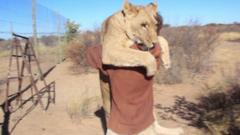 Lion hugging man