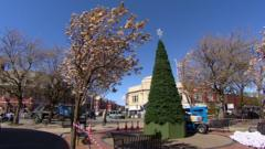 Liscard Christmas tree