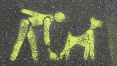 A stencil on the pavement asking you to clean up after your dog, in Havering in London