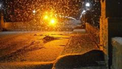 A swarm of mayflies hovers over a bridge in Pennsylvania, US