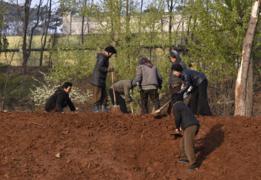 Estima-se que os trabalhadores geram US$ 230 milhões por ano para o regime norte-coreano