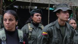 A grande maioria dos milhares de homens e mulheres das Farc são soldados de baixo nível hierárquico