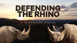 Defending the Rhino image