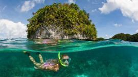 El santuario marino que se convirtió en el primer país del mundo en prohibir la mayoría de las cremas solares