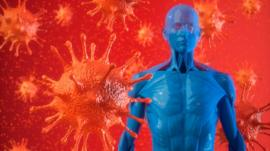 Cómo funciona nuestro sistema inmunológico y cómo combate al coronavirus