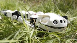 Robot salamander in the grass