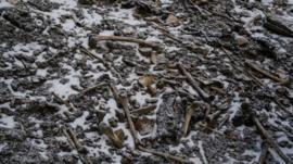 O mistério das centenas de ossadas humanas em lago gelado do Himalaia