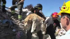 Firefighter holds rescued dog