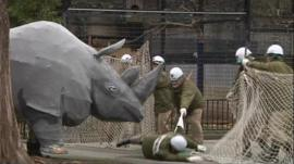 Papier Mache rhino escaping from Japanese zoo