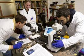 Amateur scientists looking into microscopes