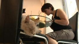 Cat and woman share a table at Vienna's Cafe Neko