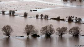 Flooding, Glastonbury