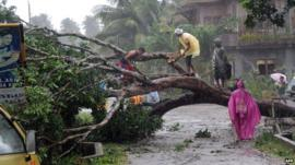 Workers clear a road with a fallen tree after Typhoon Bophal hit the city of Tagum, Davao del Norter province