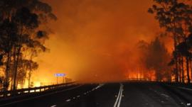 A wildfire near Deans Gap in Australia crosses the Princes Highway