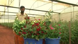 Indian flower producer