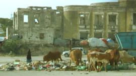 A ruined building with cows grazing in front of it