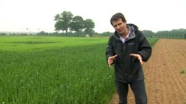 David Shukman reports on GM crops and products