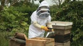 A beekeeper