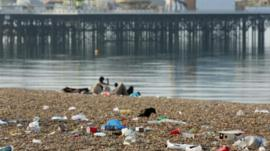 Check out Martin's report about the litter bugs taking over our beaches!