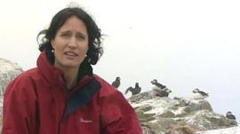 BBC's Fiona Trott
